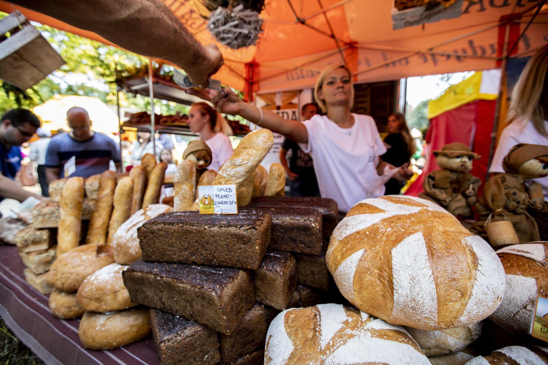 Stoisko z chlebem. Muzeum Wsi Radomskiej zorganizowało święto chleba